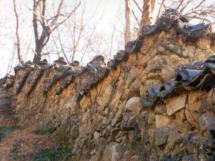 wall5