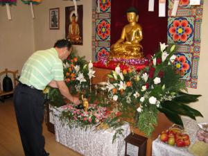 dr_buddha_02052009_13