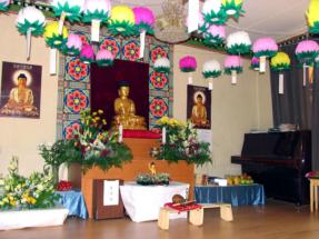dr_buddha_2006_02