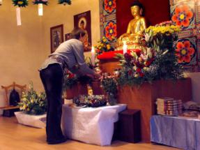 dr_buddha_2006_06