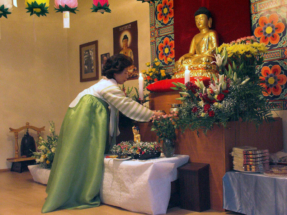 dr_buddha_2006_07