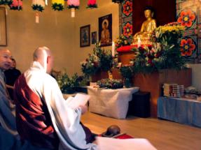 dr_buddha_2006_10