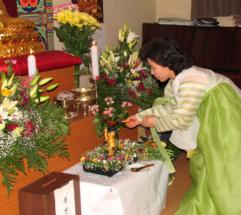 dr_buddha_2006_21