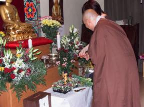 dr_buddha_2006_31