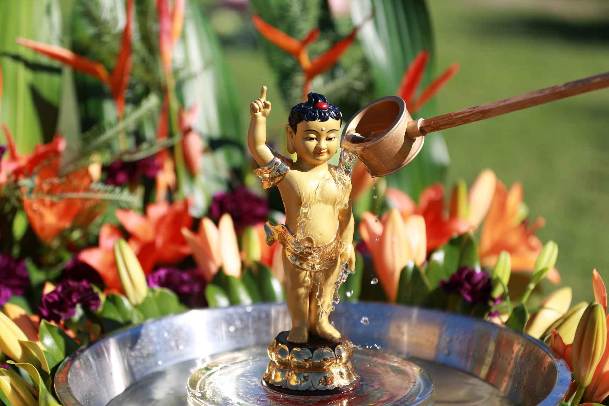 About-Buddhas-birthday