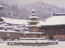 stupa5