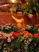 dr_buddha_24042007_41